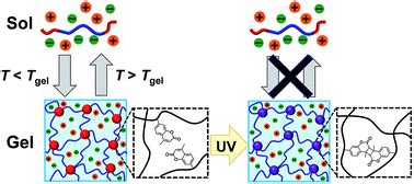 Block copolymer Ion gels for CO2 Separations